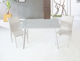 B24 Dining Table